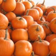 Тыква — осенний овощ или рыжая красавица! Новые блюда из тыквы